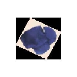 100 PETALES DE SCENE bleu
