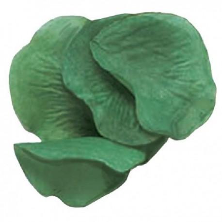 100 PETALES DE SCENE vert